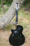framus black rose 017.JPG
