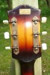 Hoyer gitarre FH 009.JPG