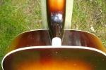 Hoyer gitarre FH 011.JPG